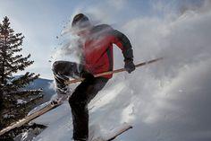 Résultats de recherche d'images pour «altai ski pole»