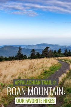 Roan Mountain hiking guide: top hikes in the Roan Highlands and to Roan High Knob and Roan High Bluff