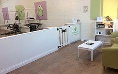 -repinned- dog grooming salon decorating ideas