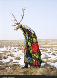 Charles Fréger - Wilderman  http://lens.blogs.nytimes.com/2013/03/18/where-the-wild-things-are/