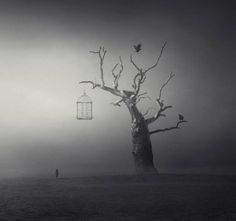 Enchanting Surreal Dark Settings – Fubiz Media