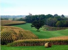 Iowa. Amazingly beautiful farm land. The best.