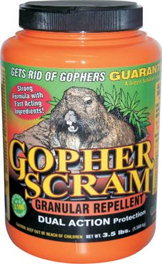 Gopher Scram is a highly effective, fully organic, biodegradable granular gopher control product. It will safely and naturally stop gopher infestation if used as directed.