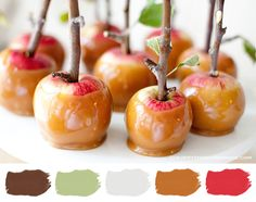 Color Palette // Caramel Apple    How about some Autumn inspired treats? These caramel apples look so delish and are super simple to make, check the DIY over at allysonbakerdesign's blog. ...