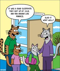 Fresh And Funny Cat Comics By The Brilliant Scott Metzger - World's largest collection of cat memes and other animals Funny Cat Jokes, Funny Cute Cats, Cute Funny Animals, Funny Cartoons, Cat Memes, Adorable Kittens, Crazy Cat Lady, Crazy Cats, Morning Memes