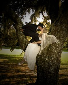 adorable couple...must have been tricky getting in the tree!