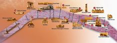 Rota do passeio de barco da Bateaux Mouches