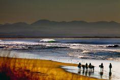 Surf Roundup.  Photo: Matt Kurvin
