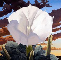 Blue Rain, Art Daily, Southwest Art, Oil Painting Abstract, Santa Fe, Art Inspo, Creative Art, Flower Art, Landscape Paintings