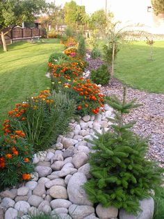38 The Best Central Texas Landscaping Ideas For Garden Cool Landscapes, Beautiful Gardens, Garden Decor, Rock Garden, Backyard Landscaping, Landscape Design, Small Gardens, Texas Landscaping, Rock Garden Landscaping