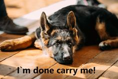 I'm done carry me!