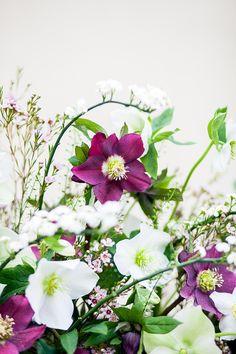 Hochzeitsblume Christrose   Hochzeitsfloristik von Sonja Klein - blumig-heiraten, Foto:  http://www.lichterstaub-fotografie.de Friedatheres.com