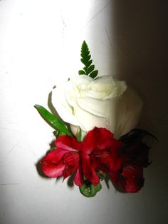 white rose and red alstromaria boutonniere