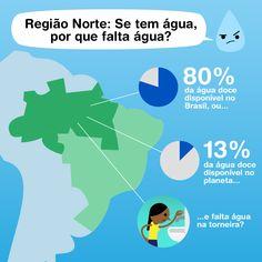 Na região com mais água doce do Brasil, falta água na torneira da população. Com o pior saneamento da América Latina, só 23,9% da zona rural amazônica está ligada à rede de distribuição de água e menos 8% da zona rural tem coleta de esgoto. Para piorar o cenário, soma-se à falta de saneamento a acelerada destruição da floresta e dos rios pela pressão dos setores da agropecuária e mineração que avançam floresta adentro.