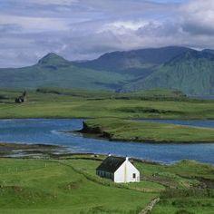 """Kaninchenplage auf schottischer Insel: """"Sie buddeln überall"""" - SPIEGEL ONLINE"""