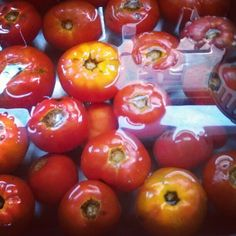 Local tomatoes blanched and peeling in the sink for canning. Instagram photo by @emmieodea via ink361.com
