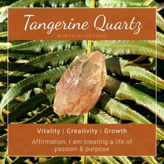 Crystals And Gemstones, Stones And Crystals, Tangerine Quartz, Psychic Development, Crystal Meanings, Green Beans, Chakra, Moonchild, App Store