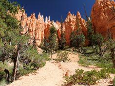 Bryce Canyon  Mehr Bilder und Infos unter http://www.triplib.de/movieguide/reiseberichte/100852-roadtrip-usa-2014---auf-vier-raedern-durch-kalifornien-und-den-suedwesten
