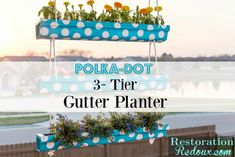 3-Tier Polka-Dot Hanging Gutter Planter - Restoration Redoux #sponsored #DIHWorkshop