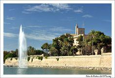Palma Maiorca