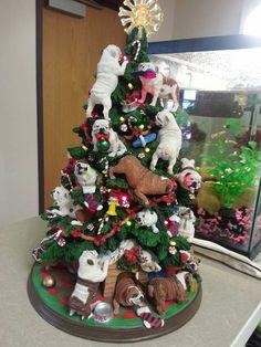 Ha! This is great!!! An English Bulldog Christmas tree.