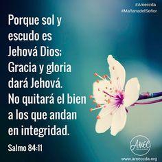 #MañanadelSeñor #AMECCDA  Porque sol y escudo es Jehová Dios; Gracia y gloria dará Jehová. No quitará el bien a los que andan en integridad. Salmos 84:11
