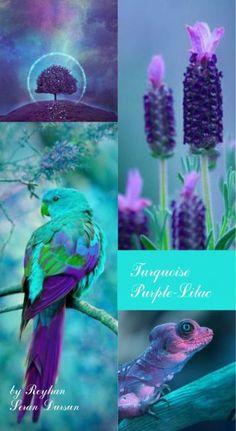 S colours- Turquoise-Purple- Lilac '' by Reyhan Seran Dursun Blue Colour Palette, Colour Schemes, Color Combinations, Mood Colors, Teal Colors, Colours, Turquoise And Purple, Purple Lilac, Aqua Blue