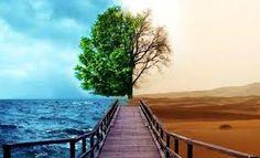 As Cortinas do Tempo: O CERTO E O ERRADO