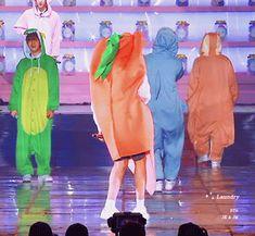 Lmao Jungkook your such a carrot Kookie Bts, Bts Bangtan Boy, Busan, Taehyung, Got7, Bts 4th Muster, Frases Bts, Boy Band, Hot Korean Guys