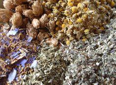 My favourite dream promoting sleep blend: mugwort, hops, chamomile, blue lotus and passionflower.  http://elmbotanicals.blogspot.com.au/2013/10/mugwort-herb-of-moon.html