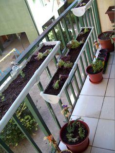#macetohuerto #macetohuerta #huertovertical #huertourbano #huertoencasa #balconygarden #balcony