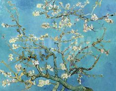 Almond Branches in Bloom, San Remy, c.1890 Art Print by Vincent van Gogh at Art.co.uk