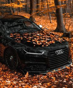 Black Audi, Black Cars, Audi R8 Wallpaper, Audi S6, Street Racing Cars, Car Pictures, Photos, Audi Sport, Best Luxury Cars