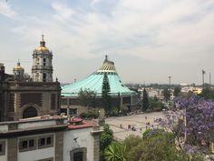 Basilica Guadalupe CDMX