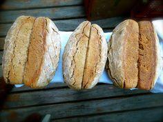 pão de trigo | fermentação natural