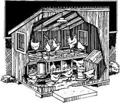 Plan pour construire un poulailler. Le poulailler. Construire un poulailler. Poulailler pas cher. Construction d'un poulailler. Poulailler en bois.