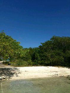 En la playa en el parque nacional Morrocoy síguenos en Twitter @morrocoyonline #morrocoy #parquenacional #falcon #morrocoyonline #manglar #manglares