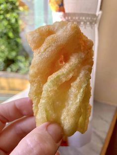 A quick and easy Italian recipe for traditional fried zucchini blossoms. Fried Squash Blossoms, Zucchini Blossoms, Bake Zucchini, Zucchini Fries, Stuffed Zucchini, Zucchini Boats, Zucchini Pasta, Italian Dishes, Italian Recipes