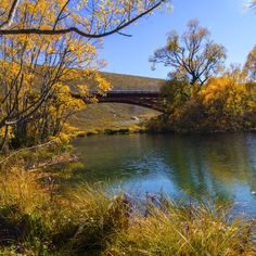 The Old Iron Bridge, Ohau River by William McPhail Display Advertising, Print Advertising, Marketing And Advertising, Retail Merchandising, Us Images, Bridge, Old Things, Iron, River