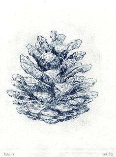Felix Baudenbacher - Pine Cone - Drypoint etching