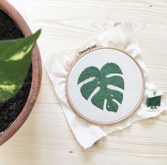 Bordando hojas de monstera  #dmcspain #dmc #bastidor #bastidorbordado #bordado #bordadoamano #bordadomoderno #embroidery #embroideryart #embroideryhoop #handembroidery #handmadeembroidery #modernembroidery #green #monstera #costilladeadan #plants #plantas #misskatiuska
