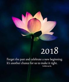 2018 forget the past and celebrate a new beginning..