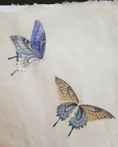 Butterfly Drawing, Butterfly Painting, Korean Painting, Chinese Painting, Chinese Art, Tattoo Flash Art, Iranian Art, Japanese Prints, Japan Art