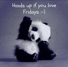Panda Friday