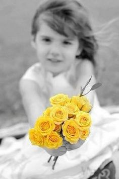 touch of yellow flowers
