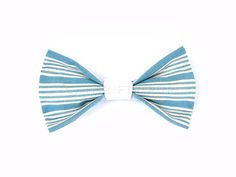 Blue Stripes Bowtie / Stars and Stripes 2015