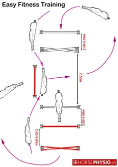 Easy Fitness Training 3