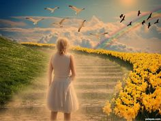 Prison, Rainbow Bridge, One Shoulder Wedding Dress, Nature, About Me Blog, Country Roads, Wedding Dresses, Poster, World