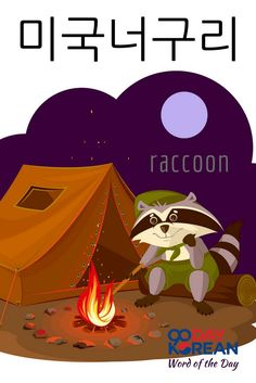 Can you use 미국너구리 (raccoon) in a sentence? Write your sentence in the comments below!