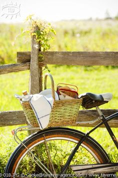 Bicycle picnic....great idea to explore your camp area if you are able to bring your bike with you.